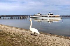 Bootsanleger Strandbad Gut Stohrerhof am Ammersee