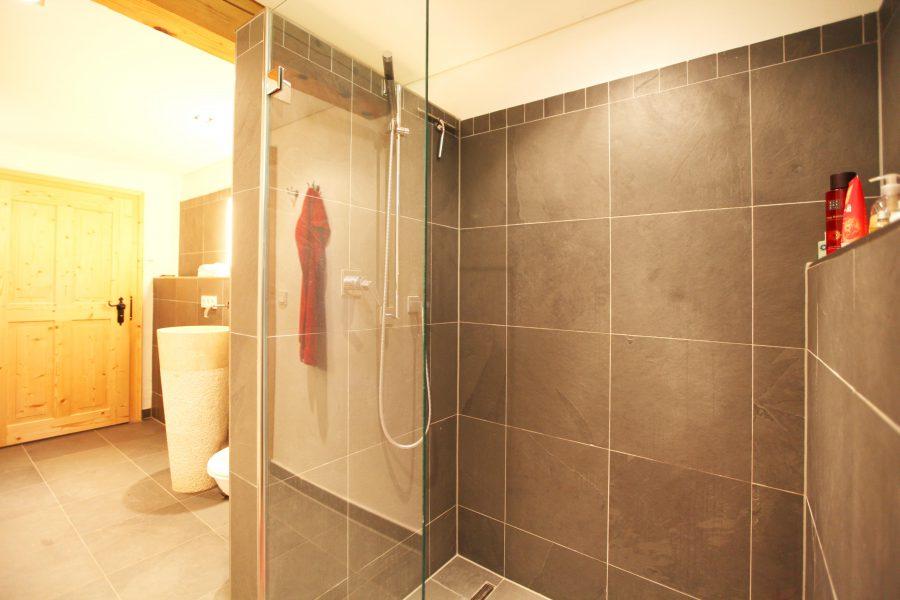 Badezimmer Dusche EG Gut Stohrerhof